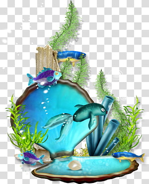 coquille avec l'art des poissons, Le monde sous-marin png