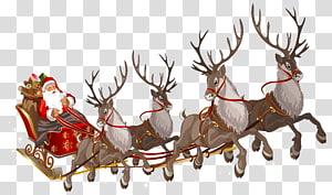 Rennes du Père Noël Rennes du Père Noël Rudolph, Père Noël avec traîneau, Père Noël png