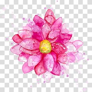 Fleur Peinture aquarelle Dessin, Fleurs d'encre à l'aquarelle, Illustration de fleurs pétales roses png