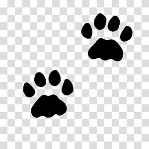 deux pattes noires, chat chien patte chaton, pattes png