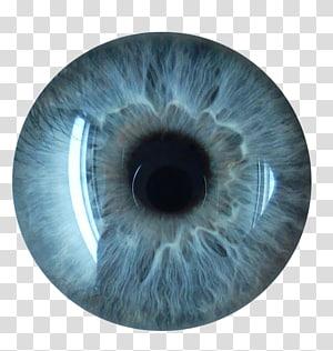 art des verres de contact gris et noir, Eye Blue, Eyes Collection png