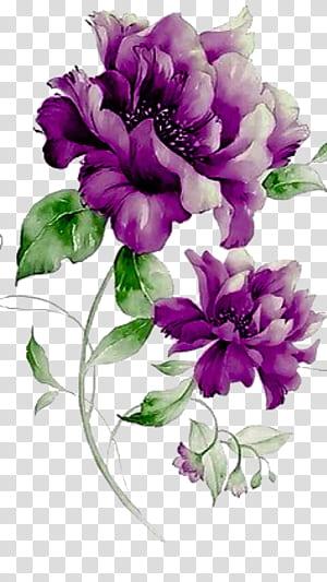 Flower Purple Design floral, fleurs violettes, pivoines violettes png