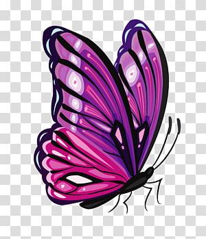 Papillon violet, papillon violet, papillon violet et rose png