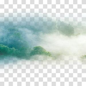 aérien, brumeux, arbres, pendant, jour, ciel vert, nuages png