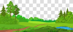 Meadow, Meadow with Trees, sentier souhaité près des arbres et des plans d'eau png