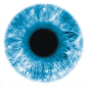 Eye Lens Lentilles de contact, yeux, gros plan de l'oeil bleu png