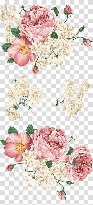 Papier rose plume oiseau Peafowl, illustration de fleurs roses et blanches de pivoine paon, png