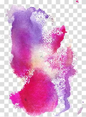 illustration de rose et de lavande, Illustration de peinture à l'aquarelle, graffiti coloré png