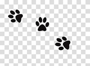 illustration de pattes noires, empreinte de patte de chat de chien, impressions de chien png