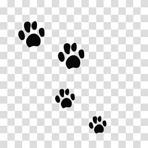 Chat Chien Tigre Ours Felidae, empreintes de patte d'ours noir png