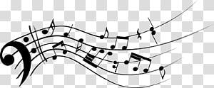 Note de musique Clef Staff Bass, Notes de musique png