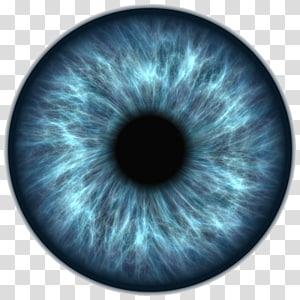 Icône des yeux, élève des yeux bleus, gros plan des yeux png