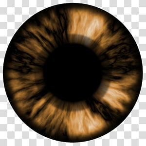 Regarder les yeux Cartographie de la texture de la lentille, œil png