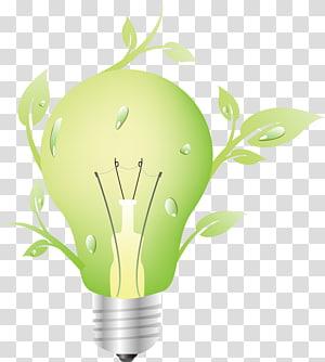 Icône d'écologie respectueuse de l'environnement, ampoules vertes à économie d'énergie png