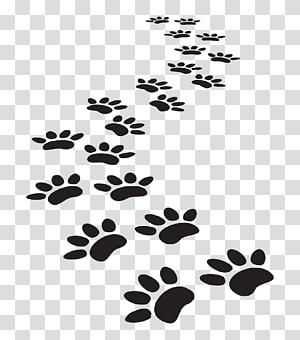 Impression de patte de chat de chien, pattes png