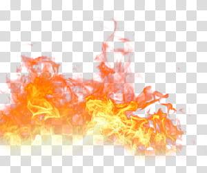 Flamme Feu Lumière, flamme, de feu png
