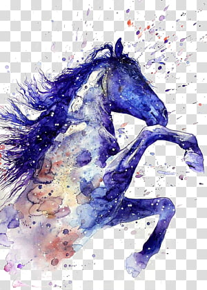 Peinture aquarelle de cheval Dessin de tatouage, dessin de Ritmeester, peinture éclaboussure de cheval bleu et brun png