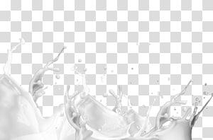 Franchisage de jus de lait, boissons, éclaboussures de lait, éclaboussures de lait png