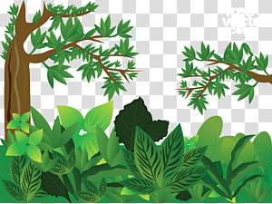 illustration de plante feuille verte, forêt Euclidienne, jungle verte png