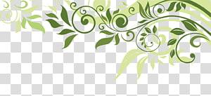 Illustration de printemps fleur bannière, bordure de la feuille, illustration de la feuille verte png