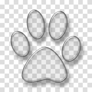 patte de chien chien chat, empreinte de patte blanche png