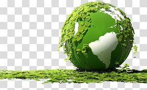 feuille verte sur la planète, Serbie Environnement naturel Protection de l'environnement Organisation Nature, Terre, protégez la Terre png