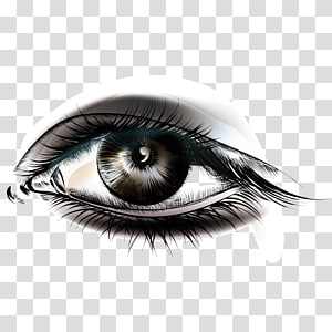 illustration de l'œil humain, Smokey Eyes Cosmetics Maquillage, yeux coquettes png
