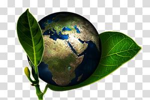 Réchauffement climatique Environnement naturel Empreinte carbone Durabilité Gaz à effet de serre, Terre verte png