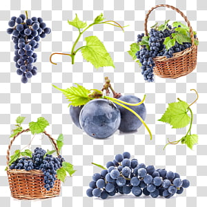 grappe de raisin, vigne raisin commun, raisin png