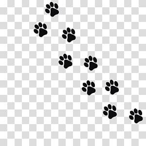 empreinte de patte de chien illustration, empreinte de chien chat chaton chat noir, empreintes de pas animal noir png