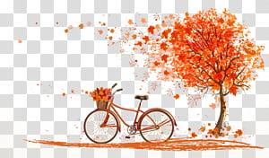 Feuille d'automne couleur Illustration arbre, vélo automne orange sous illustration d'érable, érable et vélo png