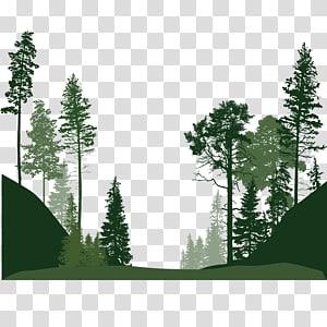 silhouette, illustration, arbres, arbre euclidien, arbres png
