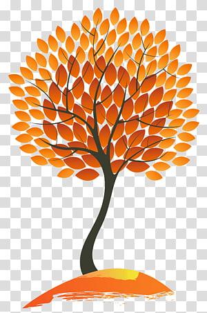illustration d'arbre feuille orange et noir, arbre de couleur feuille d'automne, arbre d'automne png