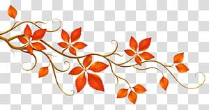 Couleur des feuilles automne branche, branche décorative avec feuilles d'automne, illustration des feuilles rouges png